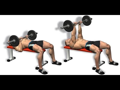 Bodybuilding Exercises For Beginners