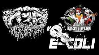 Raggatek Live Band - Ready Ready Ready (E-Coli & C3B Remix)