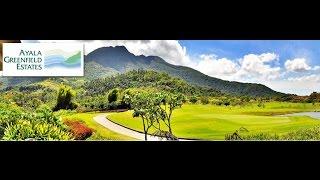 Ayala Greenfield Estates AVP