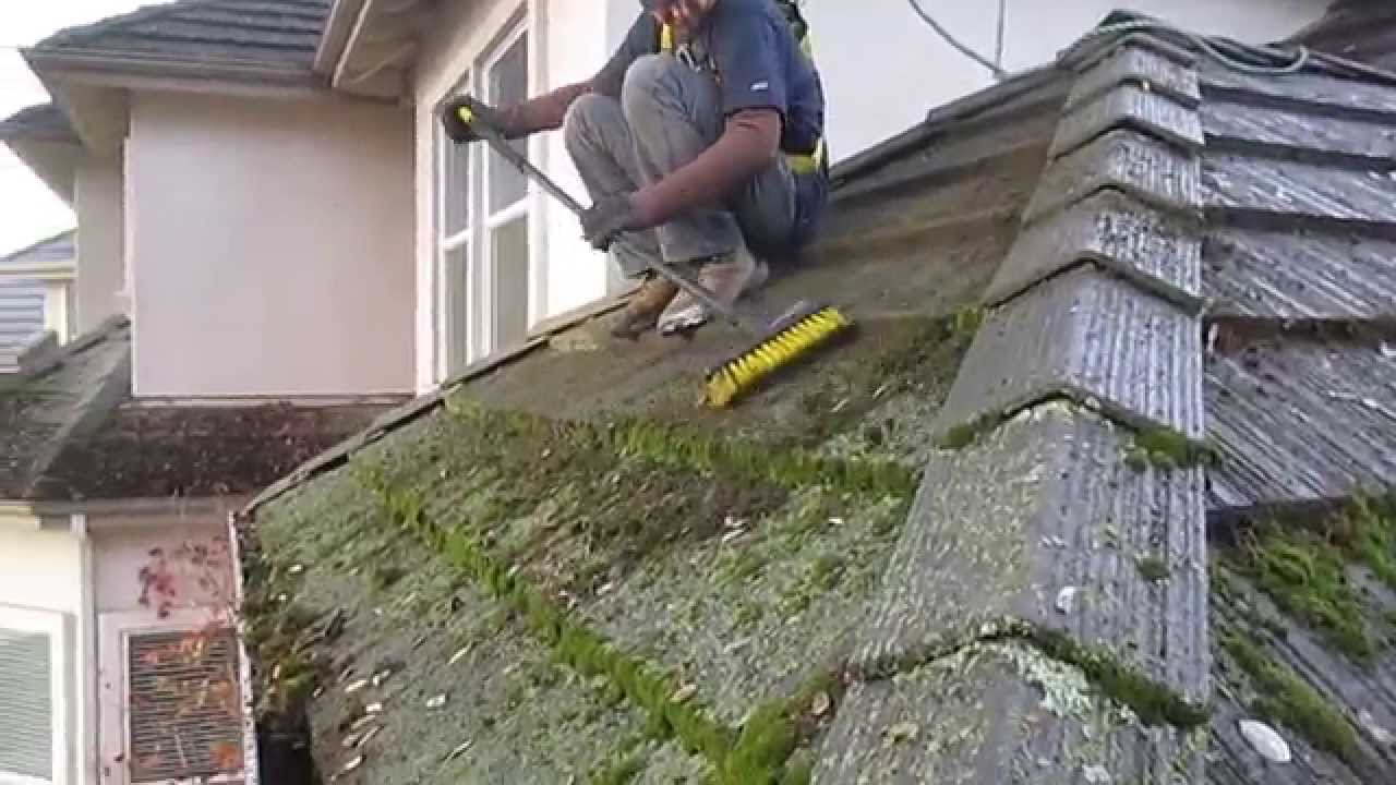 How To Clean A Moss Covered Roof In California Or Anywhere