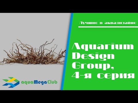 ADG (США) - короли аквадизайна и акваскейпинга, 4-я серия