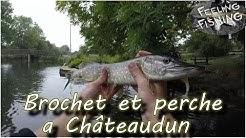 Brochet et perche en street fishing a Châteaudun
