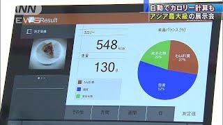 アジア最大級のIT・エレクトロニクスの展示会「CEATEC」が3日からの一般...