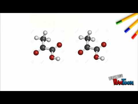 PYRUVATE OXIDATION - YouTube