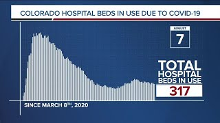 GRAPH: COVID-19 hospital beds in use as of August 7, 2020