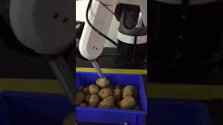 DOBOT Industrial Application Demo Video 11 - 3D Vision to Filter Potato