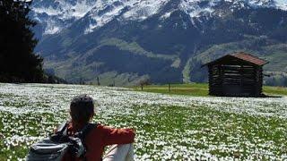 L'été des attractions Wildschoenau Tirol Autriche Alpes de Kitzbühel vacances montagnes de ...