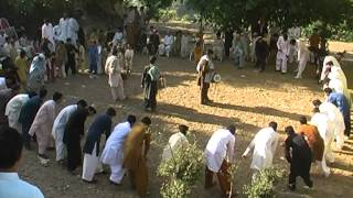 tanoli waqas marriage habibabad sherwan abbottabad