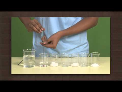 Exothermic And Endothermic Dissolution | Solubility | Chemistry