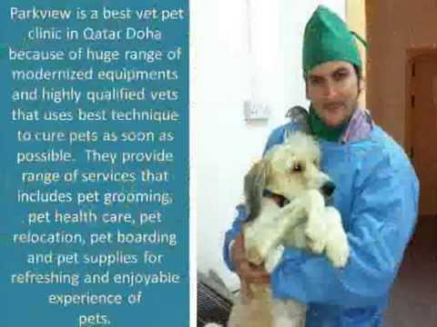 Visit Pet Dermatology Clinic In Doha