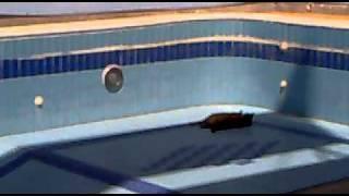 حنحنه  وبوس في المسبح في السعوديه