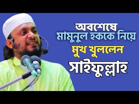 অবশেষে মামুনুল হককে নিয়ে মুখ খুললেন আব্দুল হাই মুহাম্মাদ সাইফুল্লাহ | Mamunul Haque Wife |Sonargaon|