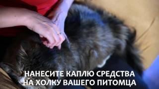 Капли для кошек от блох, клещей, власоедов и комаров