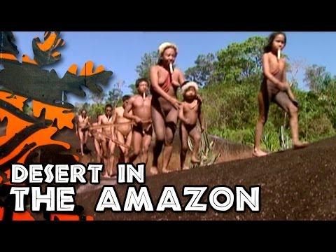 Desert in the Amazonia