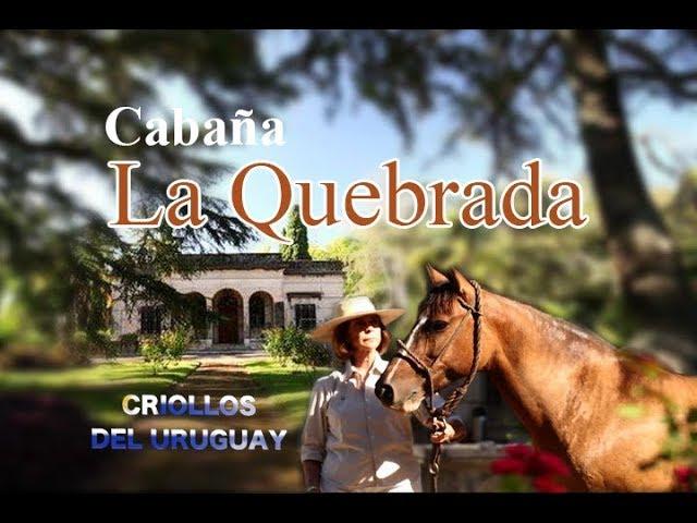Criollos de LA QUEBRADA - Uruguay