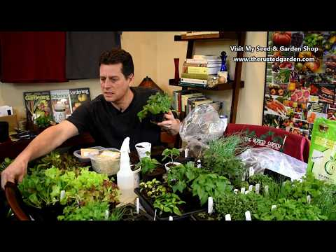 The Rusted Garden Show EP 3:Seed Starting Greens, Peppers, Onions & Herb Progress