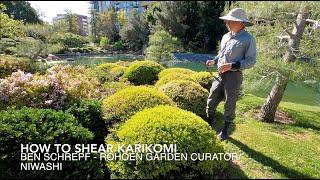 Japanese Gardening Techniques - How to Shear Karikomi and Tamamono Shrubs