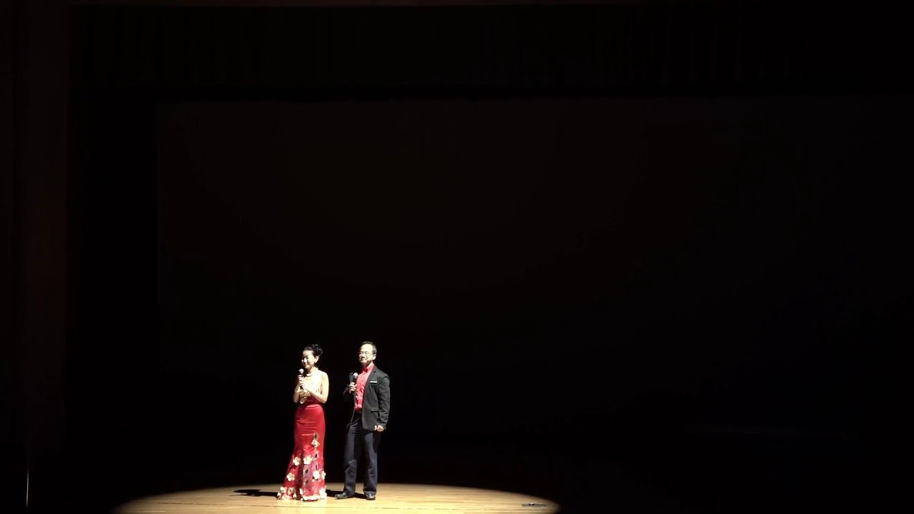2019 Chinese National Style Performance