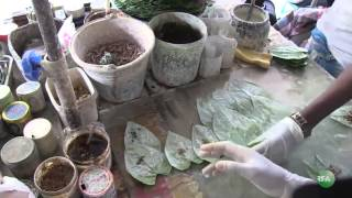 Betel Quid Chewing Habit and Environmental Problems