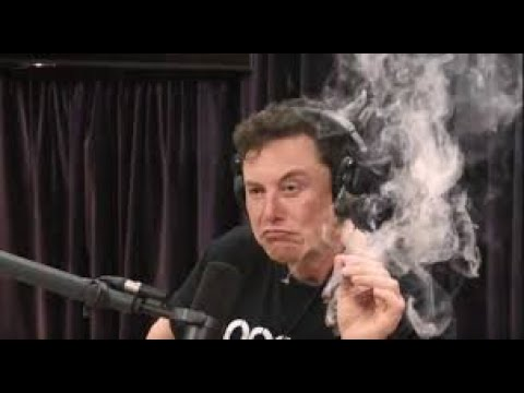Elon Musk smokes live on web show!