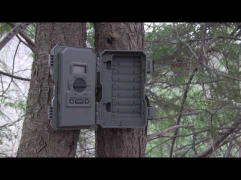 Stealth Cam PX18 Combo Kit Review