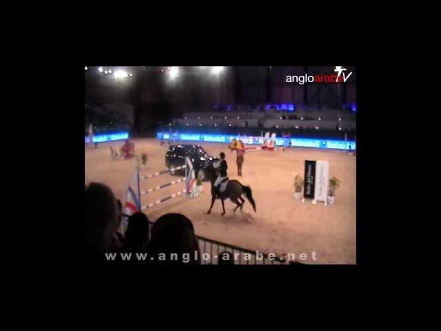 Espectaular desempate de Pidam de Paban en Madrid Horse Week, 22/12/12