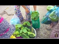 Asian Street Food, Lively Living In Cambodian Market, Country Food In My Village