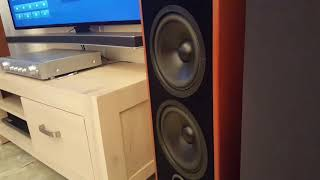 bass i Love you - Canton GLE 70