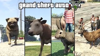GTA 5 - Play as an Animal (Dog, Cat, Cow, Boar, Rabbit, Deer & more) [PS4 & Xbox One]