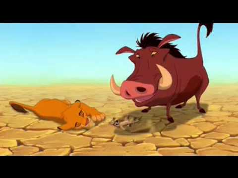 Episodes simba free king download hindi in all the lion