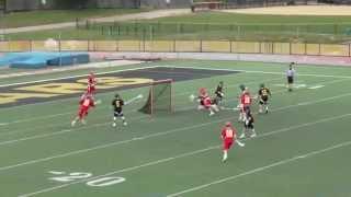 Thomas Lingner 2017 Lacrosse Goalie Highlights Spring 2015