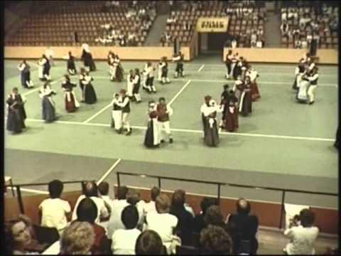 Fest og glade dage - Landsstævne 1985