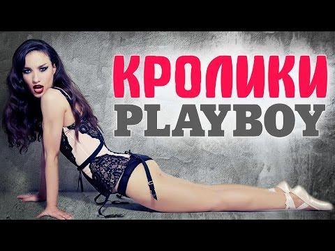 Ольга Бузова, Ксения Бородина и другие российские звезды на обложке Playboy