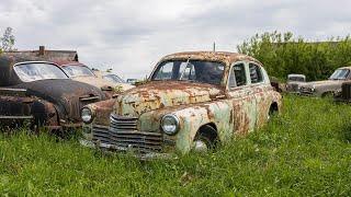 Заброшенные автомобили посреди поля или музей АВТО-СССР в Тульской области | ДРУГИЕ МЕСТА