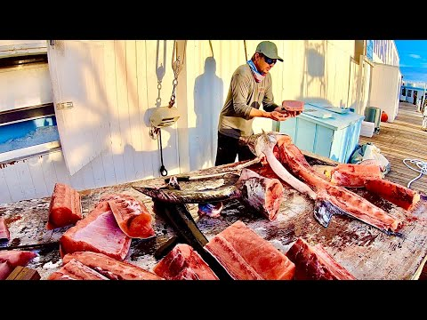 Filleting 150 Lb SWORDFISH! Stuffed With SQUID!