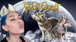 WHERE ARE MY PUPS?! - Wolf Quest