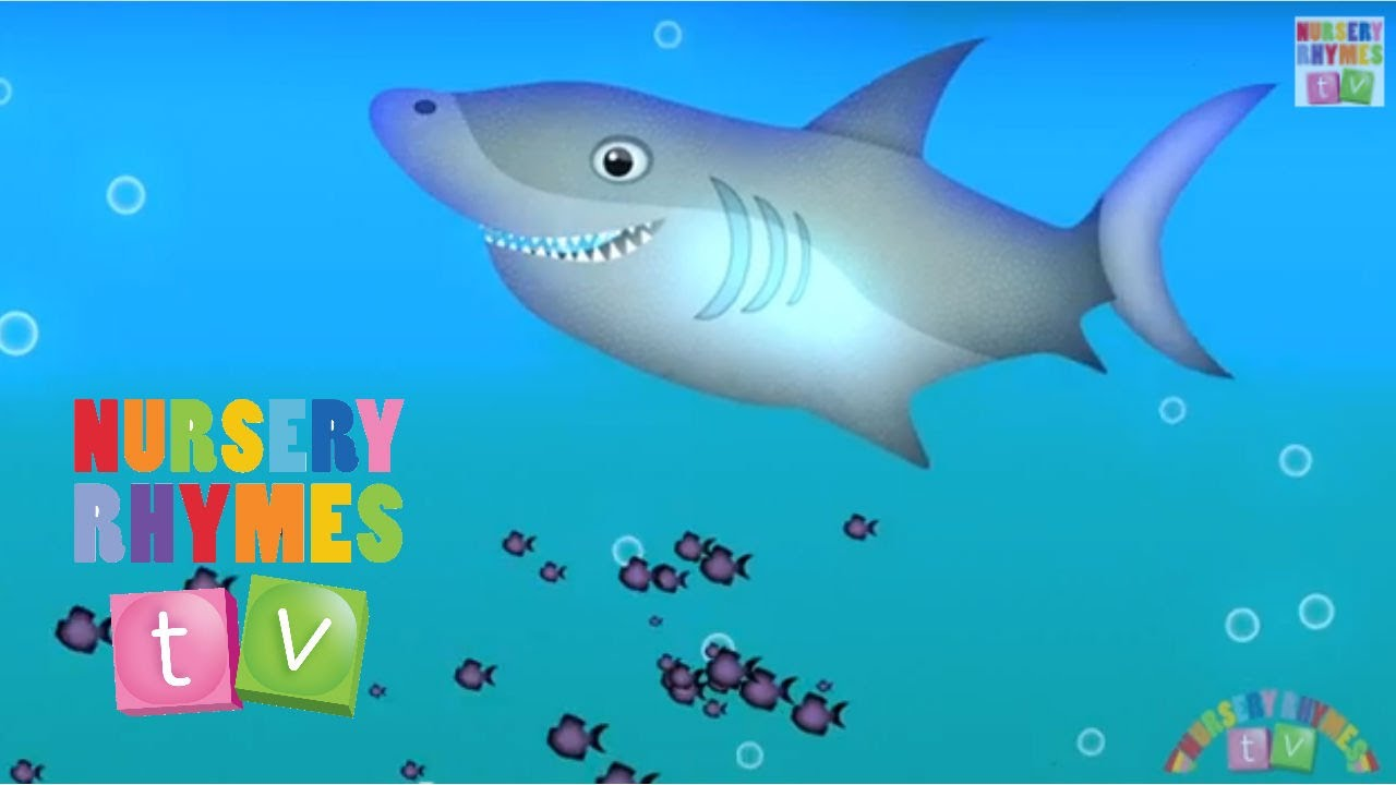 Animals In The Ocean New Nursery Rhymes English Songs For Kids Tv You