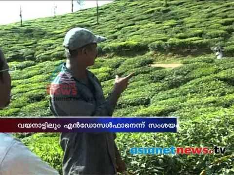 Endosulfan Pesticide Use In Wayanad ?