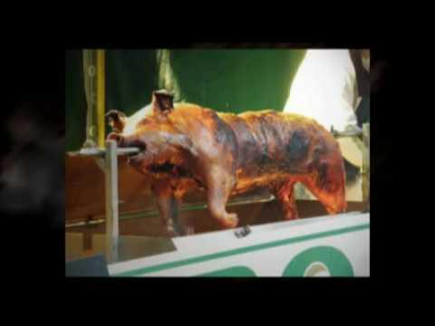 hog-roast-catering-company-bristol