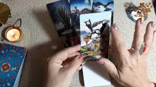 Таро Тотемных животных. В конце недели все зависит от ваших решений. Совет карт с Натальей Хадар.
