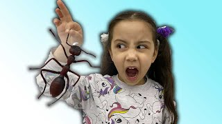 Hafsa saw the spider !!