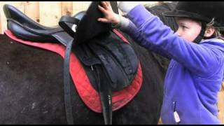 Crafty Ponies! How to lead, groom & tack up! www.craftyponies.co.uk