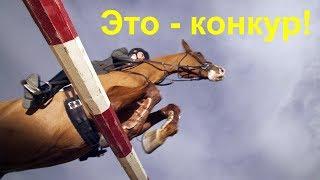 Эко – конкур! Учимся прыгать на лошади