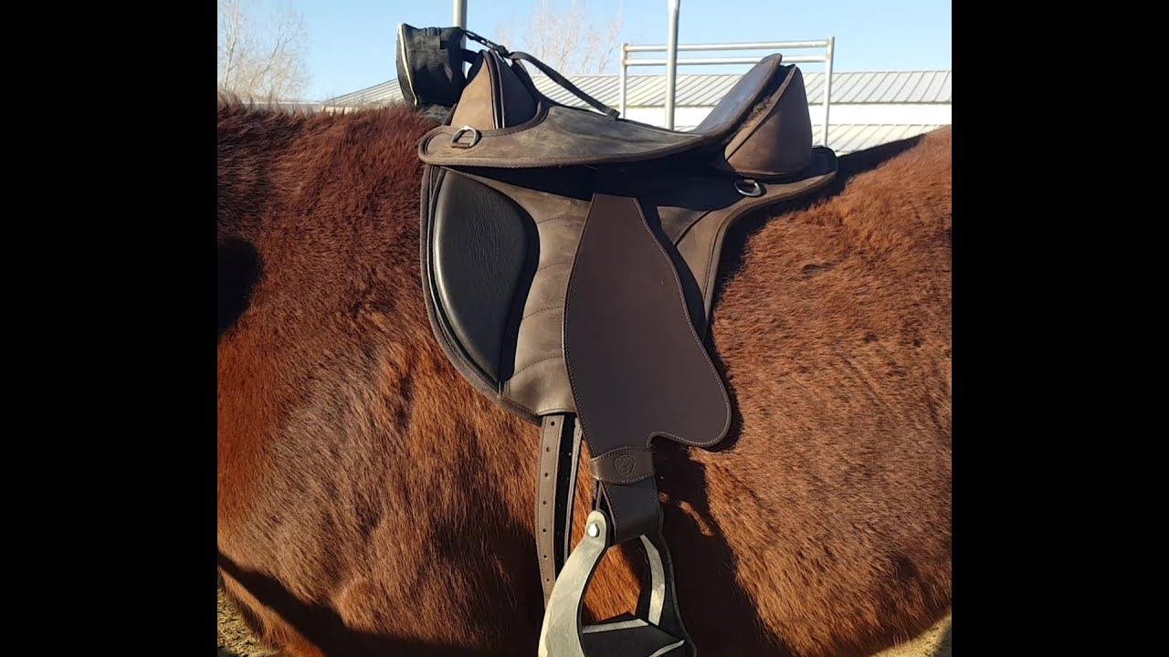 Introduction to Treeless Saddle Fit and EDIX Saddle System