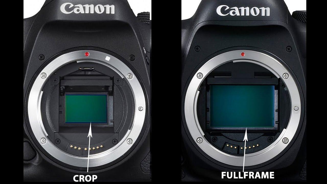 Máy ảnh FullFrame là gì ? Máy ảnh Crop là gì ? | So sánh sự khác nhau giữa máy ảnh FullFrame và Crop