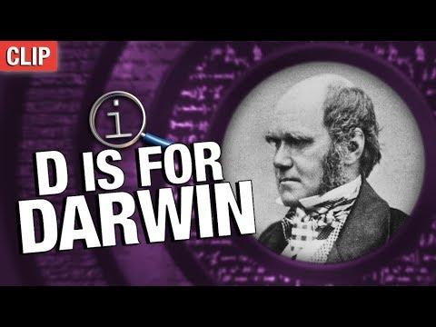 QI   Darwin Ate All The Animals