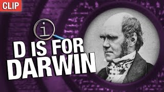 QI | Darwin Ate All The Animals