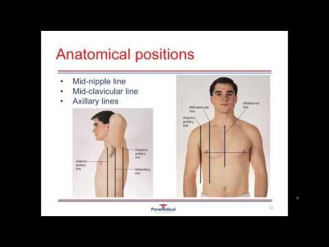 Medical Terminology Video
