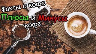Кофе защищает от диабета? Факты о кофе! Плюсы и минусы кофе