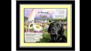Labrador Retriever Memorial - Personalized With Your Dog's Photo-name